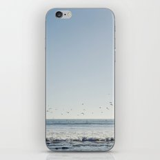 if you're a bird  iPhone & iPod Skin