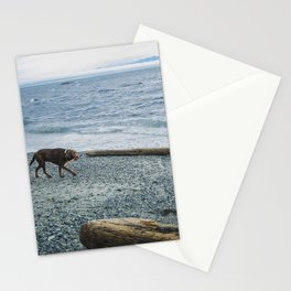 Pup on a beach Stationery Cards