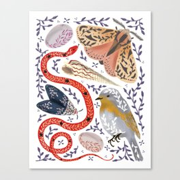 Magical Fauna Canvas Print