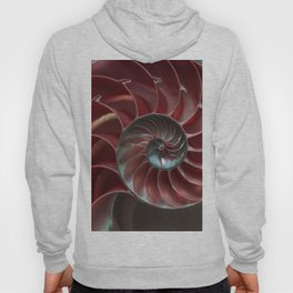 Closeup of red ammonite shell Hoody