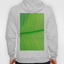 Close Up Of Green Banana Leaf Lime Green Tropical Leaf Hoody