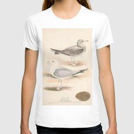Common Gull, larus canus5 T-shirt