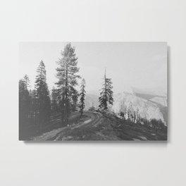 YOSEMITE IV / California Metal Print