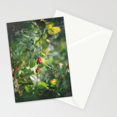 Blood Red Moon Stationery Cards