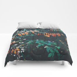 Pops of Colour Comforters