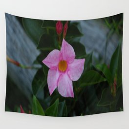 Pinky Wall Tapestry