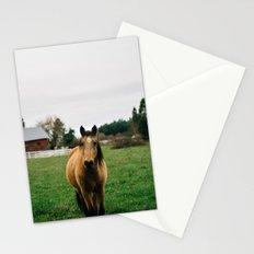 Horse // Oregon Stationery Cards