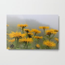 Yellow Flowers in the Alps Metal Print