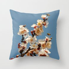 Spring 2013 05 Throw Pillow