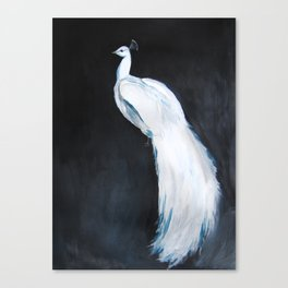 White Peacock II Canvas Print