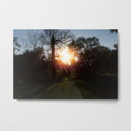 A History Of Whimsical Trees Glowing At Sundown In New Orleans Metal Print