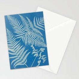 Vintage Botanical Cyanotype Stationery Cards