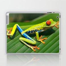 Green Tree Frog Red-Eyed Laptop & iPad Skin