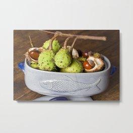 Fresh Chestnuts - AUTUMN STILL LIFE Metal Print