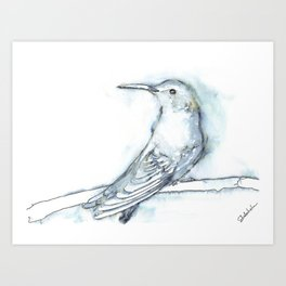 Hummingbird Watercolor, Dreamy Art Print