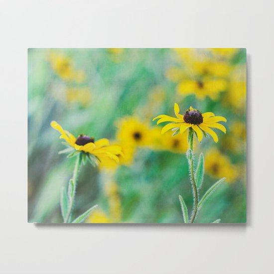 summer yellow Metal Print