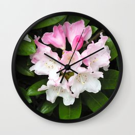 Pink Rhododendron in Spring Wall Clock