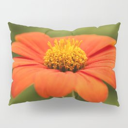 Mexican Sunflower in Bloom Pillow Sham