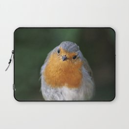 Beautiful Robin Bird Laptop Sleeve