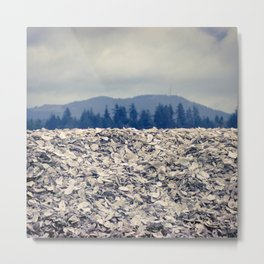 Nahcotta Oysters, Seashells, Landscape, Washington, Northwest Metal Print