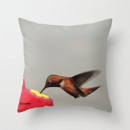 Rufous in for a Quick Lunch Throw Pillow