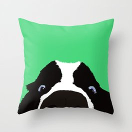 Begging Border Collie Throw Pillow