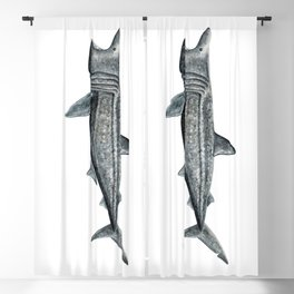 Basking shark (Cetorhinus maximus) Blackout Curtain