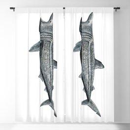 Basking shark (Cetorhinus maximus) Blackout Curtain