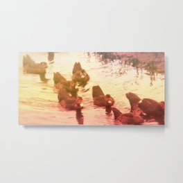 Sunday Afternoon with the Ducks Metal Print