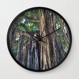 Banyan Tree in Honolulu Wall Clock