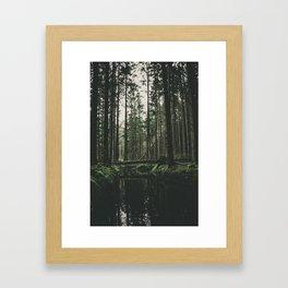 Faded Forest Framed Art Print