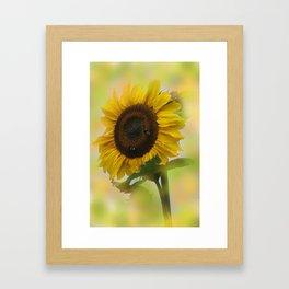 the beauty of a summerday -17 - Framed Art Print