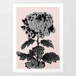 Full of chrysanthemum for mom Art Print