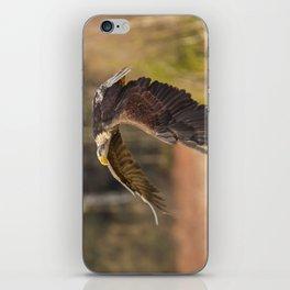 Bald Eagle in Flight iPhone Skin