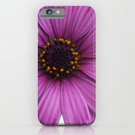 Purple Marigolds Rose iPhone Case
