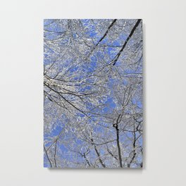 Winter Tickle  Metal Print
