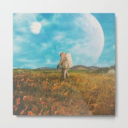 Landloping Metal Print