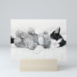 Kitten and teddy Mini Art Print