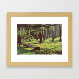 Brilliance Framed Art Print