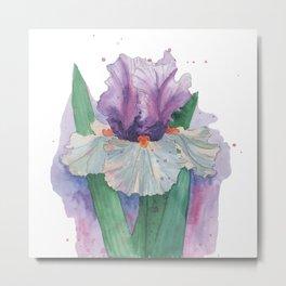 Purple Iris Watercolor Metal Print