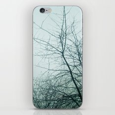 January Fog II iPhone & iPod Skin