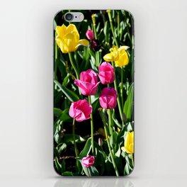 "Muscogee (Creek) Nation - Honor Heights Park Azalea Festival, Tulip ""Critical Mass"" iPhone Skin"