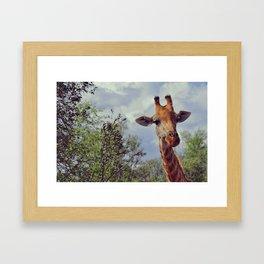 Closer, closer, how about now? Framed Art Print
