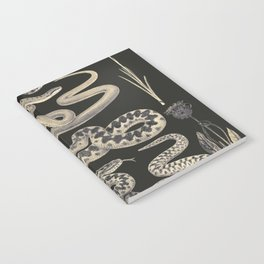 snakes and flowers Notebook