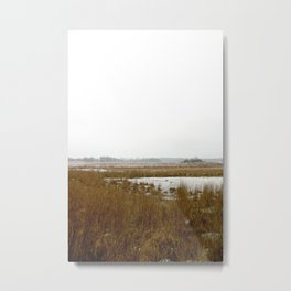 The Salt Marsh Metal Print
