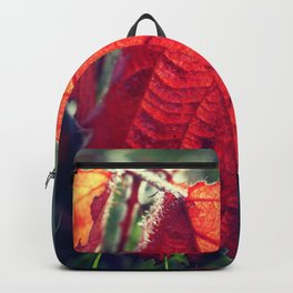 Red leaves Backpack