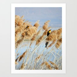 Into the Wind Art Print