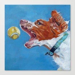 Brittany Spaniel Dog Portrait Canvas Print