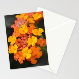 Orange and Yellow Stationery Cards
