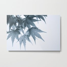 Faded Fall Metal Print